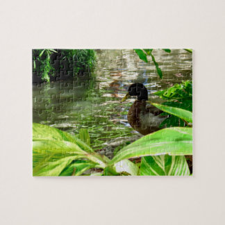 8x10 Duck Puzzle with Gift Box