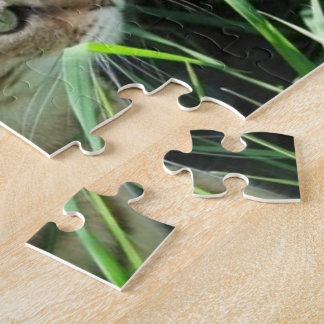 8x10 Photo Puzzle with Tin, Magnificent Cat