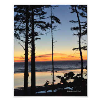 8X10 Ruby Beach on the Pacific Ocean Photo Print