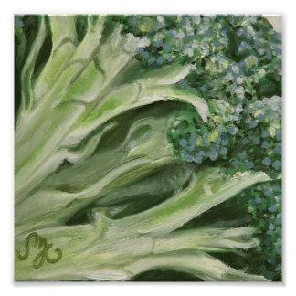 "8x8"" Photo Print - Broccoli"