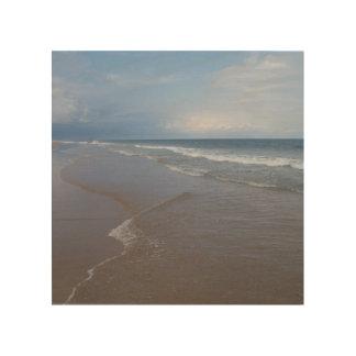 8x8 Wood Canvas - Cape Lookout National Seashore