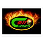 911 logo1.jpg post cards