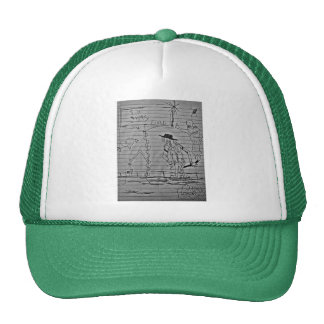 911 WAS FIXED JASMIN HATS