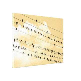 91(1) birds canvas print