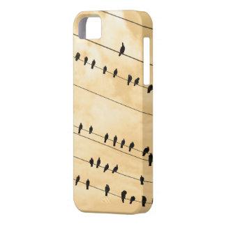 91(1) birds iPhone SE/5/5s case