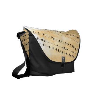 91(1) birds messenger bags