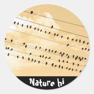 91(1) birds round sticker