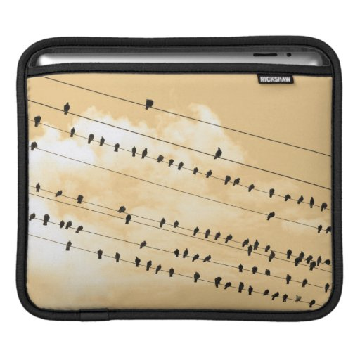 91 (1) pájaros mangas de iPad