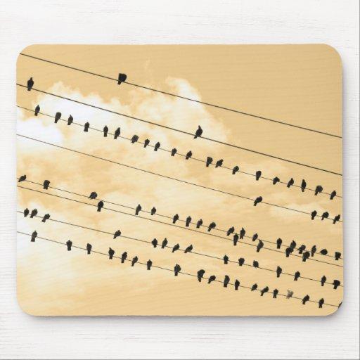 91 (1) pájaros tapete de raton