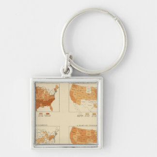 91 Proportions in occupations 1900 Silver-Colored Square Keychain