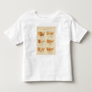 91 Proportions in occupations 1900 Tee Shirts