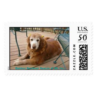 924761922-Grace7, Golden Retriever Rescue of WI... Postage