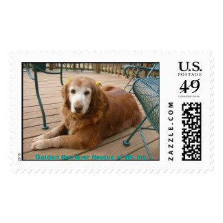 924761922-Grace7 Golden Retriever Rescue of WI Postage Stamps