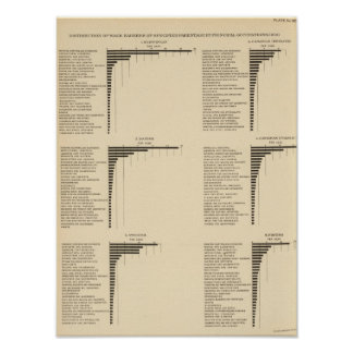 95 Proportions in occupations by parentage 1900 Poster