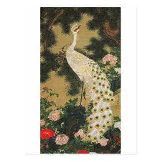 9. 老松孔雀図, 若冲 Old Pine-tree and Peacock, Jakuchu Postcard