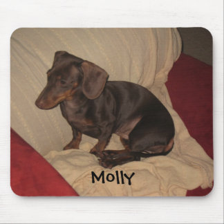 9-11-10 004, Molly Mouse Pad