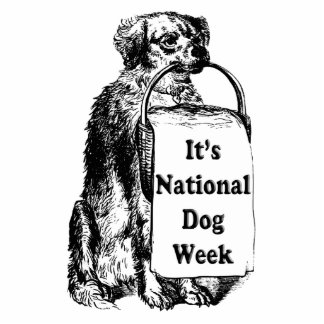 9/21-27 National Dog Week Statuette