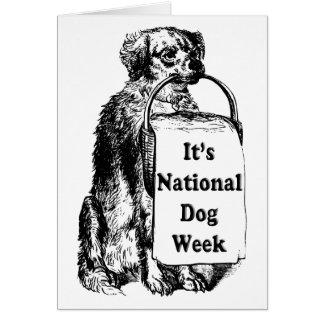 9/21-27 semana nacional del perro tarjeta de felicitación