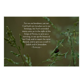 9:9 de Ezra Póster