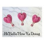 9 hola hola cómo usted que hace postales