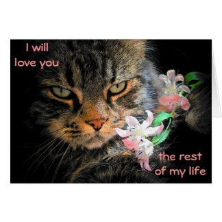 9 Lives to Love You Cat Meme Card