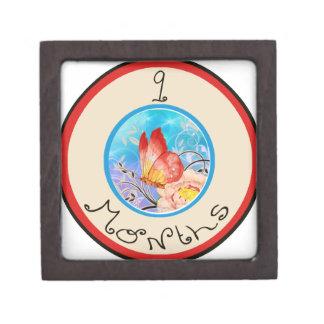 9 meses de jalón de la mariposa cajas de recuerdo de calidad