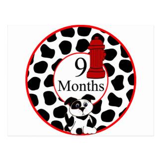 9 meses de jalón del bombero tarjeta postal