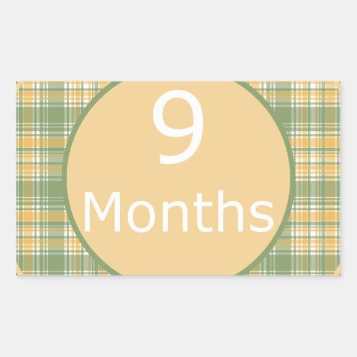 9 Months Plaid Milestone Sticker
