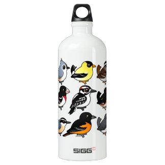 9 Northeast USA Backyard Birds Aluminum Water Bottle