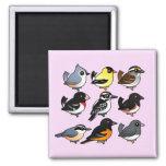 9 Northeast USA Backyard Birds Fridge Magnet