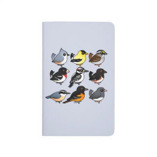 9 Northeast USA Backyard Birds Journal