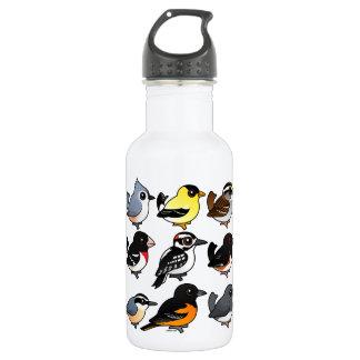 9 Northeast USA Backyard Birds Water Bottle