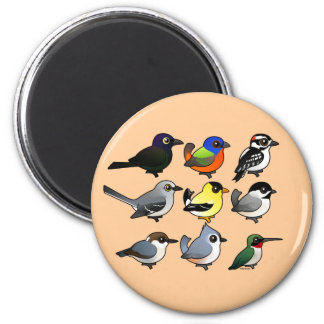 9 Southeast USA Backyard Birds 2 Inch Round Magnet