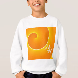 9b332487fde5bd79227cdc2398ac743d sweatshirt