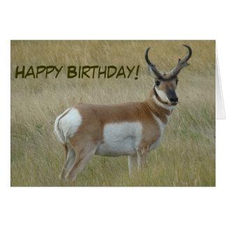A0001 Pronghorn Antelope Buck Card