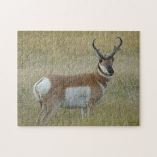A0001 Pronghorn Antelope Jigsaw Puzzle