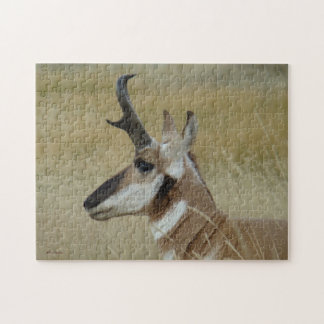 A0004 Pronghorn Antelope Jigsaw Puzzle