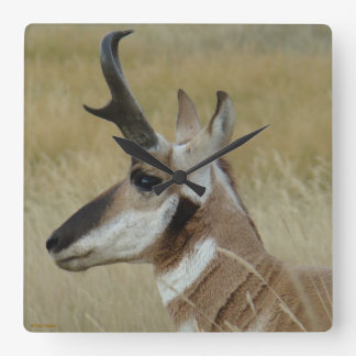 A0004 Pronghorn Antelope Square Wall Clock