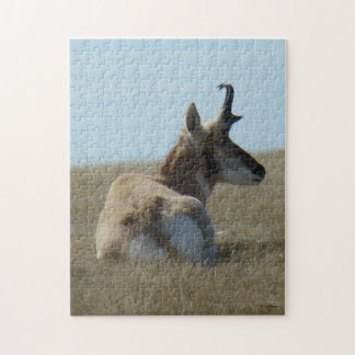 A0016 Pronghorn Antelope Puzzle