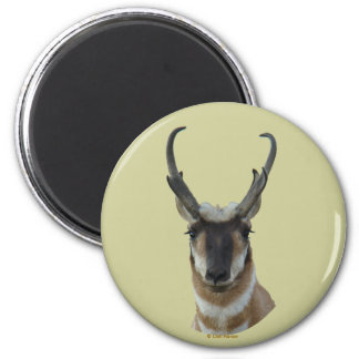 A0019 Pronghorn Antelope Head magnet