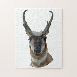 A0019 Pronghorn Antelope Jigsaw Puzzle