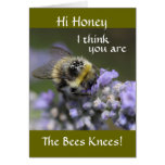 A001-30 Honey Youre the Bees Knees: Card