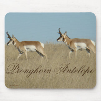 A0045 Pronghorn Antelope Bucks Mouse Pad