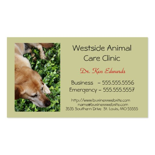 A014 BIZ - Veterinarian and Animal Care Services Double-Sided Standard Business Cards (Pack Of 100)