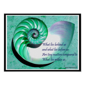 A01b Nautilus Shell Poster - Inspirational Quote