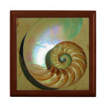 A11b Chambered Nautilus Shell Tiled Box Gift Boxes