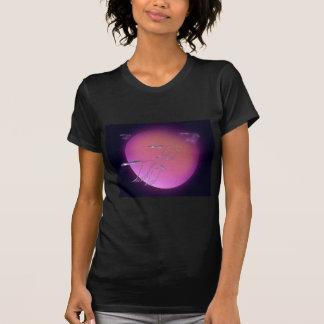 A1 Blue Geese sun JPEG T-Shirt