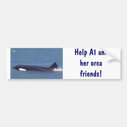 A1 the orca whale! bumper stickers