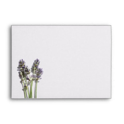 a7 lavender bunch with purple interior envelope zazzle