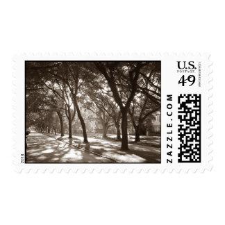 a99xel Houston - North Blvd Postage